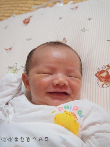 出生第十九天1