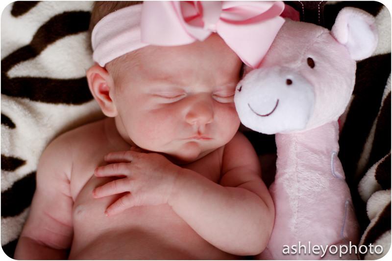 NewbornBlog-8