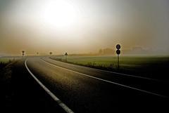 Autumn fog (nemseck) Tags: street autumn sun fog contrast landscape strada piemonte roads sole nebbia autunno strade paesaggio contrasto nikond200 volpiano