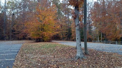 Biking November 13 003