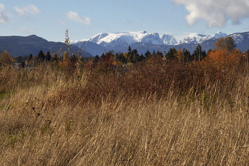 comox glacier from the airpark