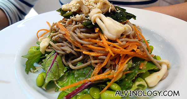 Rachel's order - brown noodle with assorted toppings