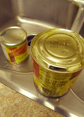 Anglų lietuvių žodynas. Žodis canned food reiškia konservuotas maistas lietuviškai.