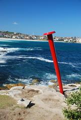 DSC_3724 (J.D Chen ) Tags: trip travel blue sea vacation sculpture holiday beach bondi by nikon tour au working sydney australia nsw newsouthwales sculpturebythesea bondibeach   backpackers whv d80  workingholidayvisa