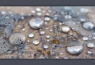 silvery droplets
