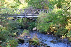 Dunvegan castle water garden (gmj49) Tags: bridge skye water garden scotland sony dunvegancastle gmj a350
