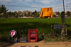 Clothes drying, Virappur Gaddi. Hampi, Karnataka (dml82) Tags: travel india green bottles washing ricepaddy hampi