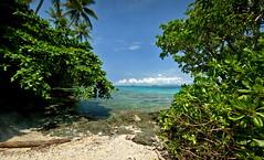 PNG_March_2012_112 (sebtron) Tags: canon png papuanewguinea alotau milnebay 400d nuakata