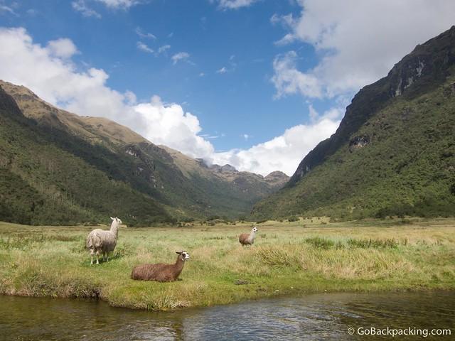 Glacial valley in El Cajas Park