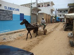 Senegal Photo