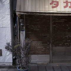 Finally Shuttered in Ginza, Takaoka Store (jacob schere [in the 03 strategically planning]) Tags: urban plant green nature up japan shop wall square tokyo ginza store rust decay jacob text rusty front backstreet communication pot rusted shutter oxidation font greenery  meter lucid homage oxidize decaying potted survivor takaoka fragment surviving survive sidestreet greening shuttered metered schere grii cosed oxidizing jacobschere lucidcommunication