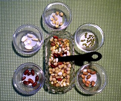 Sorting Beans and Spoon (Photo from Montessori at Home)