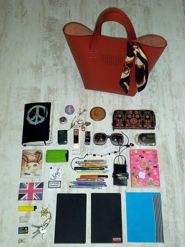 nina's bag