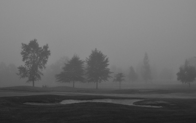 Windsor golfers in the mist