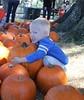 IMG_8921 (drjeeeol) Tags: pumpkin pumpkins will fav pumpkinpatch triplets toddlers fallfestival 2011 36monthsold painteroaksacademy