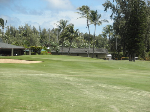 Turtle Bay Colf Course 216