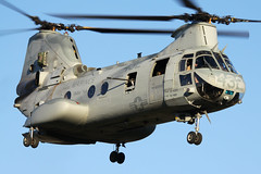 "Boeing-Vertol CH-46E Sea Knight BuNo 154860, HMM-764 ""Moonlight"" (Joe_Copalman) Tags: sea helicopter knight marines buno usmarines ch46e boeingvertol 154860 hmm764 buno154860"