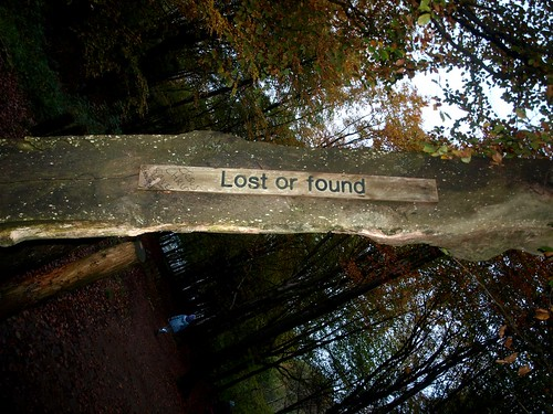Lost or found (28/365)