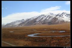 _MG_0495 (dm4379) Tags: tibet 西藏