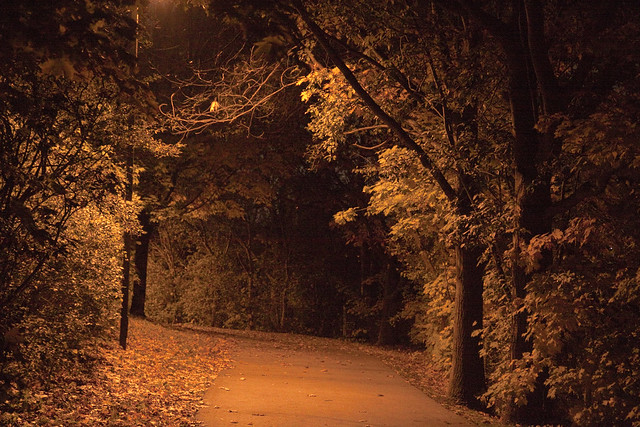 path at night