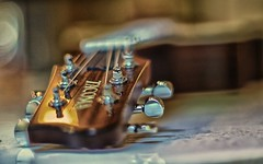 Guitar Bokeh (Pete A. McLeod) Tags: stilllife aperture dof bokeh guitar depthoffield tacoma tabletop mcleod nikcolorefexpro nikon50mm12 nikond7000