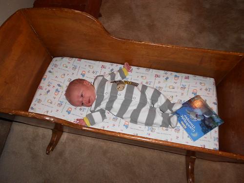 5 Weeks cradle