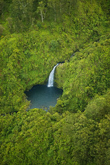 "Maui waterfall and pool - helicopter aerial (IronRodArt - Royce Bair (""Star Shooter"")) Tags: hawaii waterfall rainforest maui wondersofnature mauiwaterfalls hanawaterfalls"
