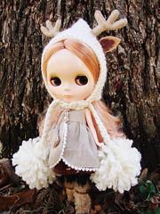 Klara in frost (natural variation)