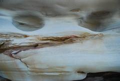 DSC_3702 (J.D Chen ) Tags: trip travel blue sea vacation sculpture holiday beach bondi by nikon tour au working sydney australia nsw newsouthwales sculpturebythesea bondibeach   backpackers whv d80  workingholidayvisa