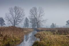 Friesche Veen (Frenkieb) Tags: mist holland netherlands sunday veen drenthe friesche