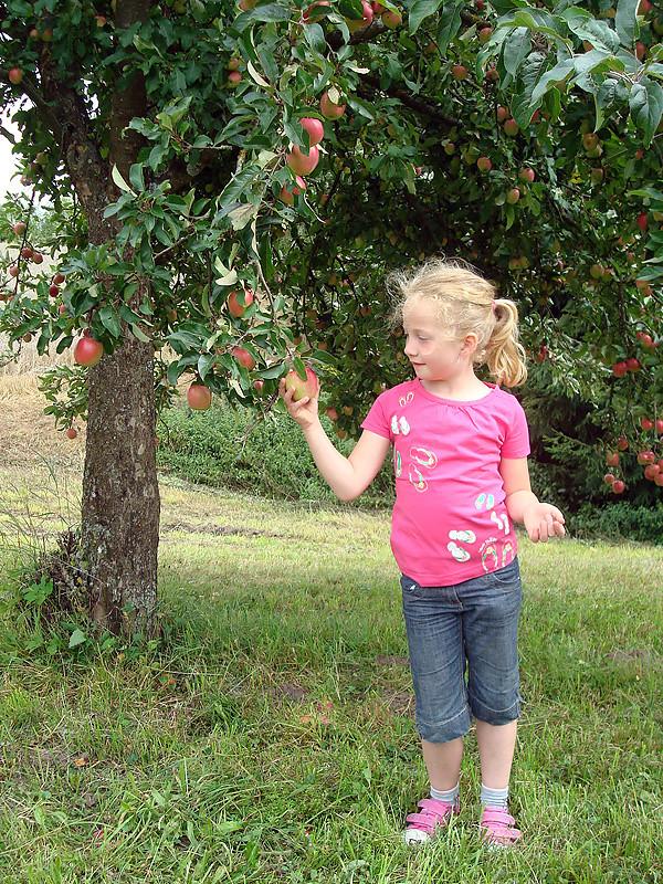 Mädchen unterm Apfelbaum