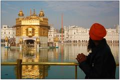 True-hearted Prayers .. (y'O'gs) Tags: india golden prayer silk front divine holy sikh punjab amritsar goldentemple amrit sarovar incredibleindia indiantourism harmindarsahib wonderofindia