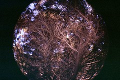34A (-BerrY-) Tags: sardegna sea party pool night lomography sand berry fisheye amici vacanze brach compleannno