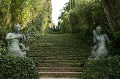 "Santa Clotilde gardens / Fenals / Spain ""11 (Piotr Kowalski) Tags: santa trees green beach gardens spain costabrava clotilde espania lloretdemar fenals"