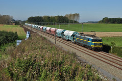 2019, Gingelom (RobbyH83) Tags: 20 kalk nmbs fruitstreek blogistics