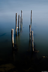 Old wharf (Nuno.Medeiros) Tags: old longexposure bridge blur abandoned portugal nature river nikon exposure natural filter wharf ria aveiro cais lcw murtosa riaaveiro 18105mm flickraward flickrestrellas d7000 nd500 ringexcellence dblringexcellence tplringexcellence eltringexcellence