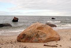 Glacial Erratics (sandy richard) Tags: usa newyork unitedstates geology wildwood calverton wildwoodstatepark sandyrichard longislandgeology sandrarichard