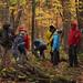 A wild mushroom hunting expedition in the Adirondacks. Photo: George Cook, Saranac Lake NY.