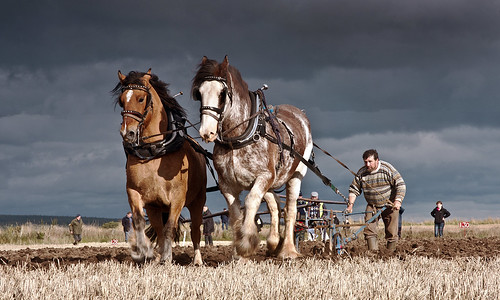 Scottish Ploughing Championships 2011 by Bruiach/ Colin Campbell