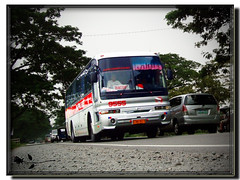 PHILIPPINE RABBIT Bus Lines, Inc. - Hyundai Aero Space LS - 9555 (B.R.0917 - The Revival - [Inactive Account]) Tags: bus rabbit lines phil diesel space line company co motor hyundai ls inc aero incorporated turbocharged philippine i6 aerobus 9555 inline6 straight6 prbl  d6ab   d6abd kmjrj18bpyc
