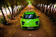 Lamborghini Murcielago (Abdulaziz ALKaNDaRi | Photographer) Tags: green canon photography eos saudi arabia hq lamborghini murcielago ksa 2011  abdulaziz    550d    t2i  alkandari   blinkagain abdulazizalkandari