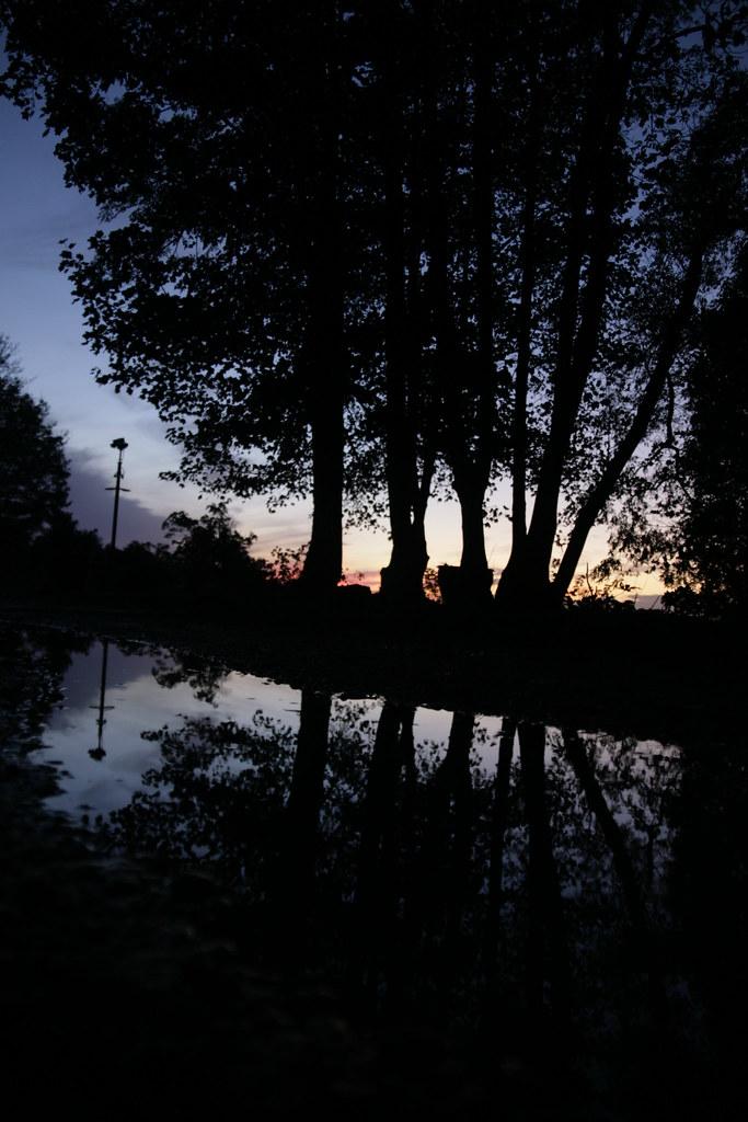 IMAGE: http://farm7.static.flickr.com/6215/6295714428_2339dc491f_b.jpg