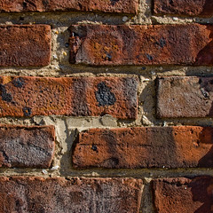 CB485 Old Brick Wall (listentoreason) Tags: red usa color brick texture closeup america canon newjersey pattern unitedstates masonry favorites places material groundsforsculpture ef28135mmf3556isusm score40