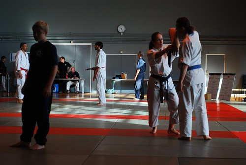 6299406685 d2db7da728 London & Hove Shodokan Aikido Festival 2011