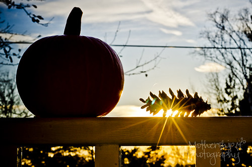 317:365 Sun sets on another autumn