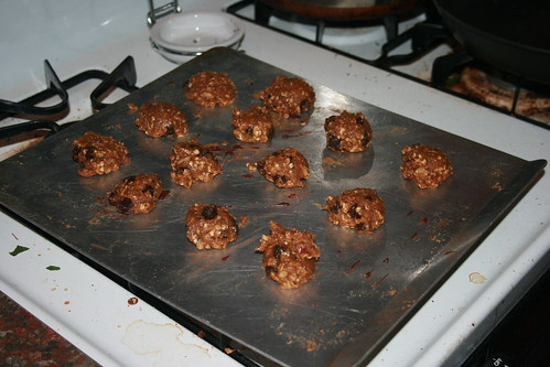 oatmeal okara cookies