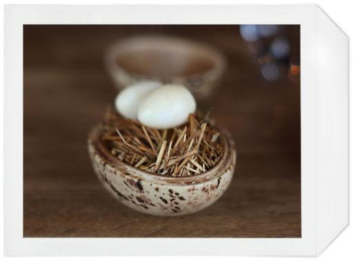 noma_eggs