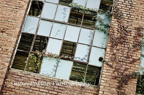 wwarehouse_windows