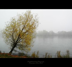 . ..atmospheric.. . (oliver's | photography) Tags: trees lake nature photoshop canon landscape eos flickr raw image  hannover adobe atmospheric copyrighted maschsee pixelwork ilovemypics oliverhoell theacademytreealley pixelwork11photography allphotoscopyrighted