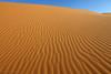 Sand Texture (TARIQ-M) Tags: texture landscape sand waves desert dunes riyadh saudiarabia بر الصحراء الرياض صحراء رمال رمل طعس كانون المملكةالعربيةالسعودية الرمل خطوط صحاري canonef1635mmf28liiusm نفود الرمال كثبان براري تموجات تموج نفد canoneos5dmarkiifullfram